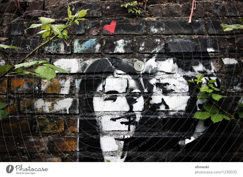 Human being Woman Youth (Young adults) Man 18 - 30 years Adults Wall (building) Life Love Graffiti Feminine Wall (barrier) Couple Together Masculine Contentment