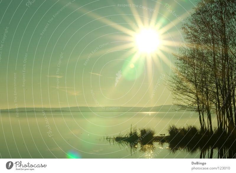Sky Blue Water Green Tree Sun Ocean Calm Yellow Autumn Coast Lake Lighting Fog Large Mirror