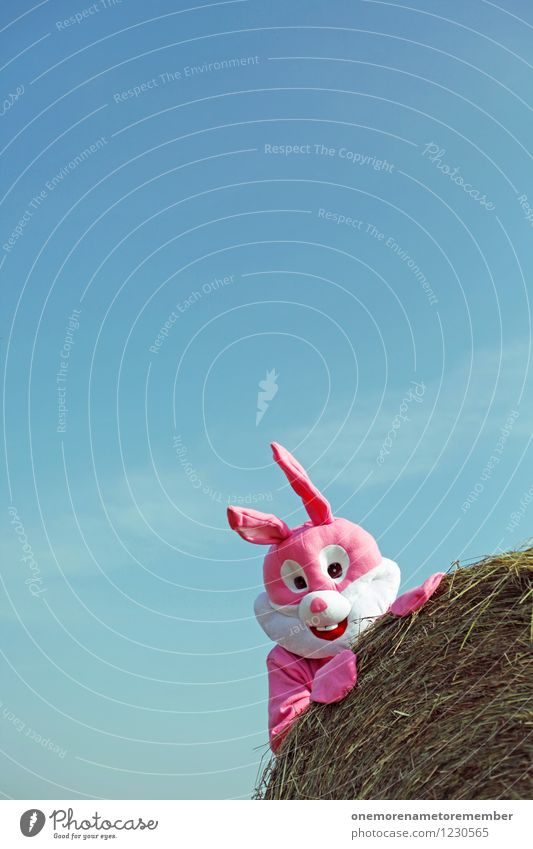 Happy Day Art Work of art Esthetic Joy Comical Funster The fun-loving society Bale of straw Hay bale Hare & Rabbit & Bunny Hare ears Hare hunting Roasted hare