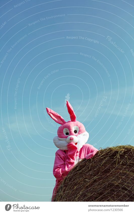 hoppla Art Esthetic Hide Childish Hiding place Cover Nature Timidity Wait Scare Pink Carnival costume Joy Comical Funster The fun-loving society Straw Absurdity