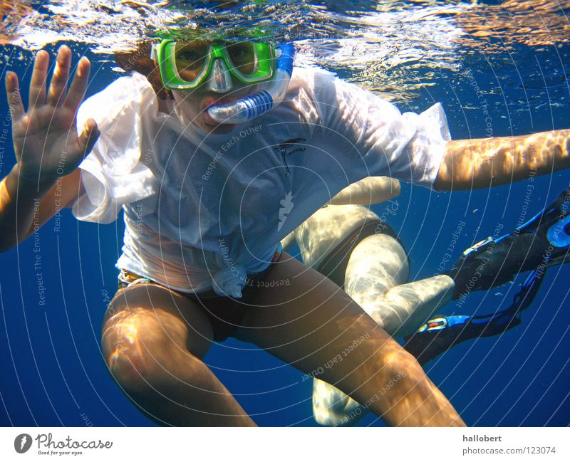 Hi, you! Ocean Reef Dive Snorkeling Maldives Water Aquatics Underwater photo dream vacation sea from below