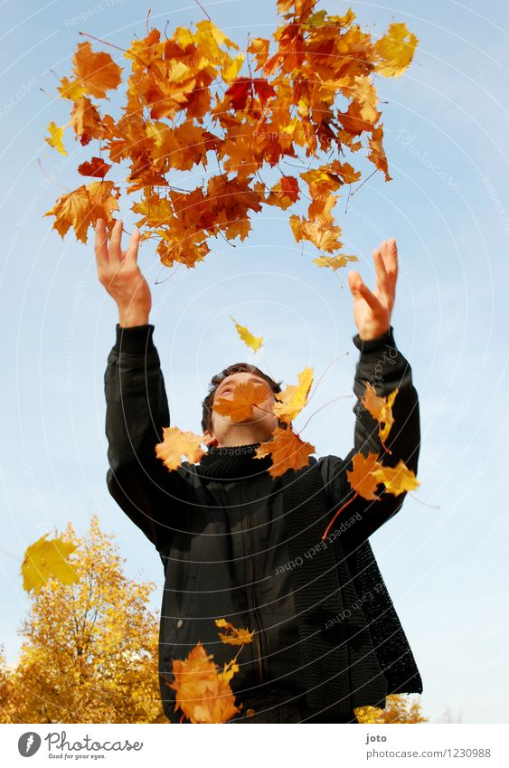Human being Nature Man Leaf Joy Adults Yellow Life Autumn Happy Flying Orange Contentment Fresh Free Happiness