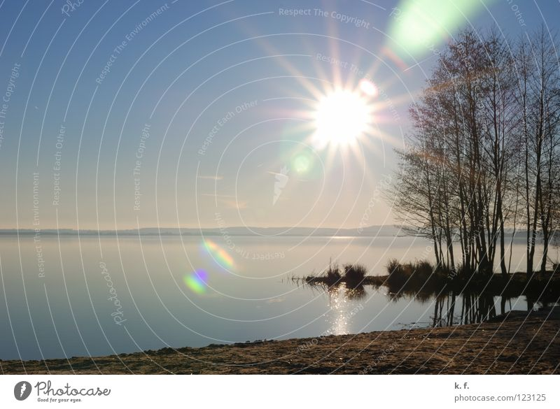 Water Sun Winter Beach Lake Coast Blue sky Steinhuder Lake
