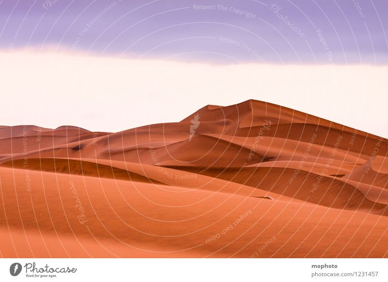 Beautiful curves #4 Vacation & Travel Tourism Trip Adventure Far-off places Expedition Environment Nature Landscape Elements Sand Warmth Desert Namibia Deserted