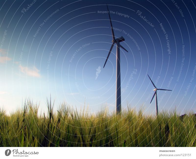Sky Nature Meadow Environment Landscape Wind Leisure and hobbies Energy industry Climate Future Industry Science & Research Wind energy plant Financial Industry
