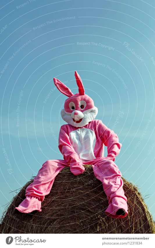 just chillin Art Work of art Esthetic Hare & Rabbit & Bunny Hare ears Hare hunting Roasted hare Buck teeth Rabbit's foot Sit Costume Relaxation Hay bale