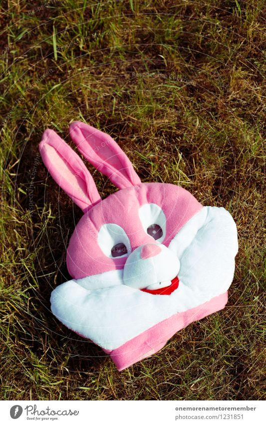bannomask Art Esthetic Hare & Rabbit & Bunny Hare ears Hare hunting Roasted hare Buck teeth Mask Masked ball Carnival costume Pink Colour photo Multicoloured