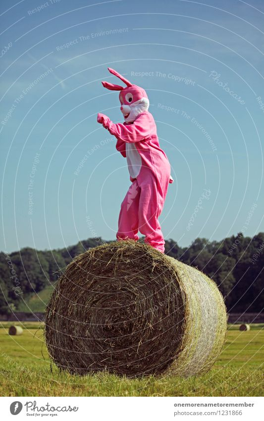 Joy Movement Funny Art Pink Esthetic Dance Tall Hare & Rabbit & Bunny Radio (broadcasting) Work of art Blue sky Carnival costume Comical Funster Hay bale