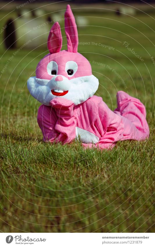 rabbit Art Dreamily China Pink Hare & Rabbit & Bunny Carnival costume Meadow Sunbathing Eroticism Joy Disguised Colour photo Multicoloured Exterior shot