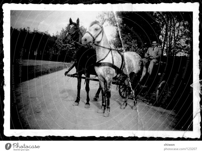carless superclass Horse-drawn carriage Black White Village Carriage Wheels Transport Means of transport Highway Things no fine dust particles Old Scan
