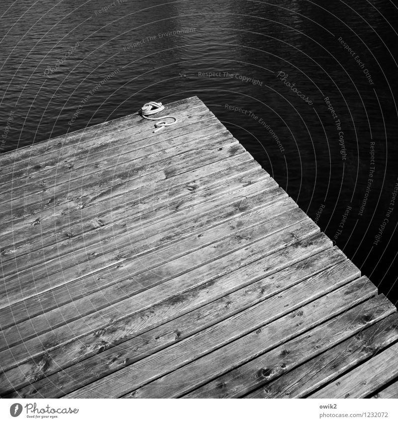 water cant Water Jetty Footbridge Sharp-edged Simple Maritime Rope Edge Corner Wood Wooden board planks Lake Dark Sadness Copy Space Black & white photo