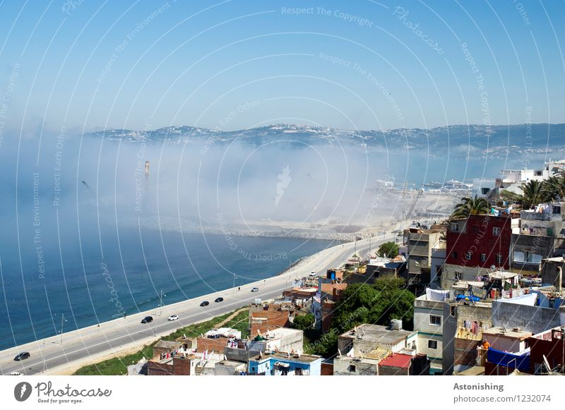 Fog Sea Environment Nature Landscape Air Water Sky Cloudless sky Summer Climate Weather Plant Tree Hill Waves Coast Ocean Mediterranean sea Tangiers Morocco