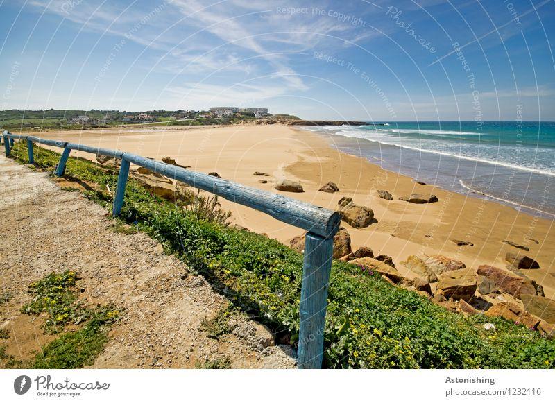 Sky Nature Vacation & Travel Blue Plant Summer Water Ocean Flower Landscape Beach Environment Yellow Grass Coast Brown