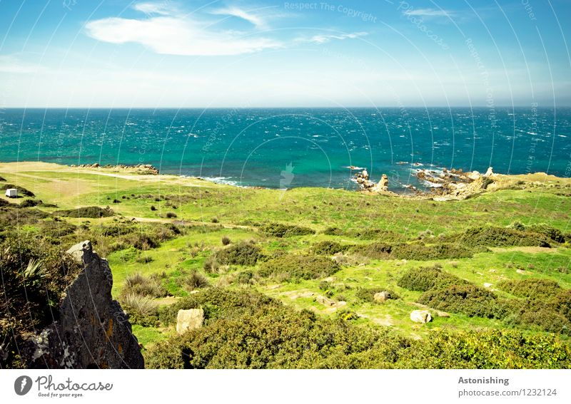 the green beach Environment Nature Landscape Plant Water Sky Clouds Horizon Summer Weather Beautiful weather Grass Bushes Foliage plant Meadow Rock Waves Coast