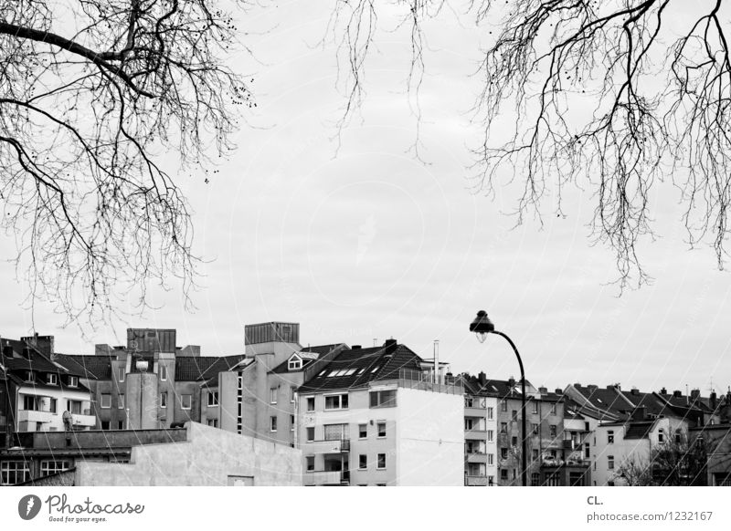 urban Sky Autumn Winter Duesseldorf Town House (Residential Structure) Building Architecture Street lighting Living or residing Black & white photo