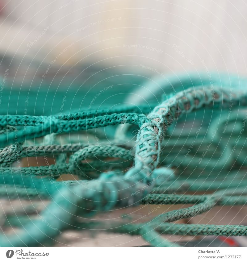entanglements Plastic Line Net Network Lie Authentic Maritime Gray Green Turquoise Chaos Integration Synthesis Knot Reticular Cable pattern String Rope