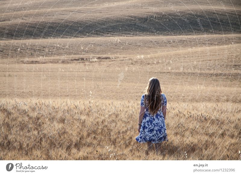 Romandic Feminine Young woman Youth (Young adults) Woman Adults 1 Human being 13 - 18 years Child 18 - 30 years Summer Field Hill Cornfield Italy Tuscany Dress