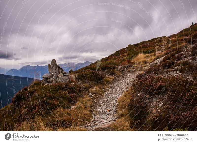 Nature Plant Landscape Clouds Far-off places Mountain Autumn Grass Rock Weather Earth Bushes Footpath Peak Alps Bad weather