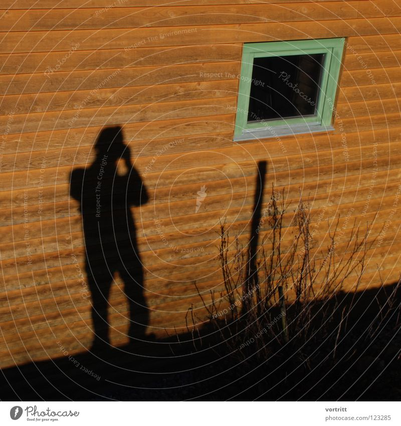 Human being Man Winter House (Residential Structure) Colour Window Wall (building) Wood Bushes Photographer Self portrait Voyeurism Minimal Spy Reduce