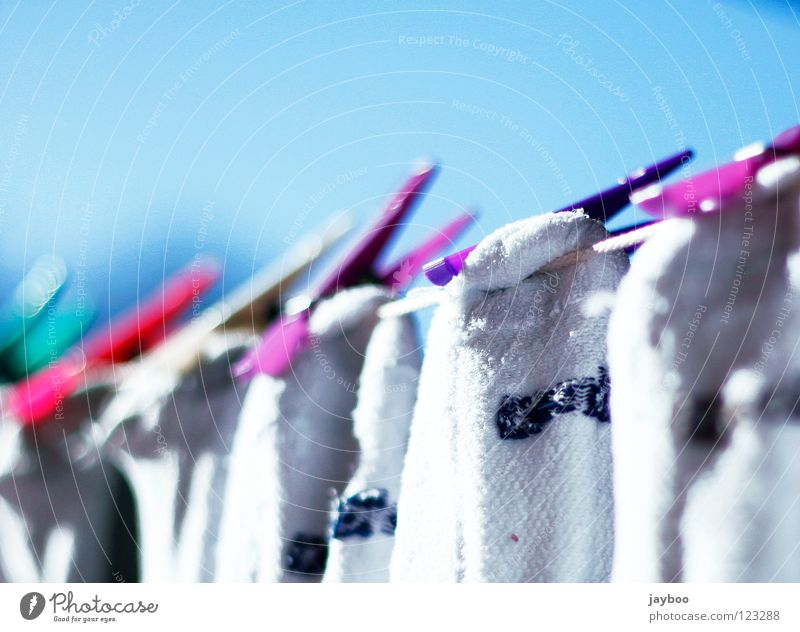 All fresh Laundry Holder Green Wet Dry Fresh Clean White Household Pure Red Multicoloured Stockings Violet Rope Sky Blue Beautiful weather Washing Washing day