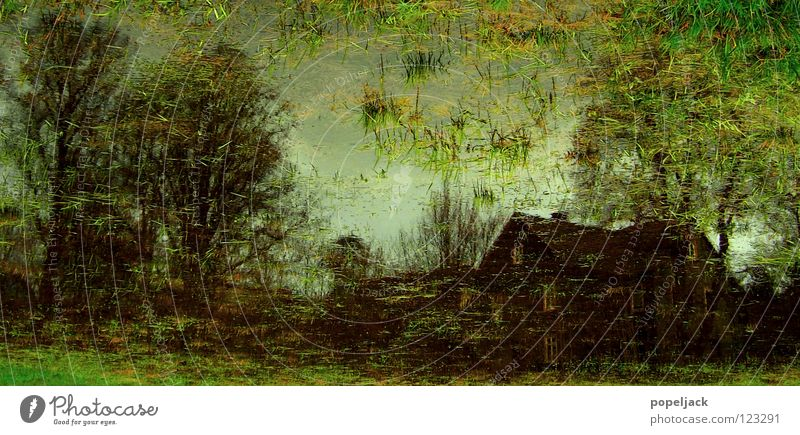 Impressionist meadow painting Meadow House (Residential Structure) Tree Grass Wet Marsh Bog Blade of grass Cold Water Image Painting (action, work) High tide