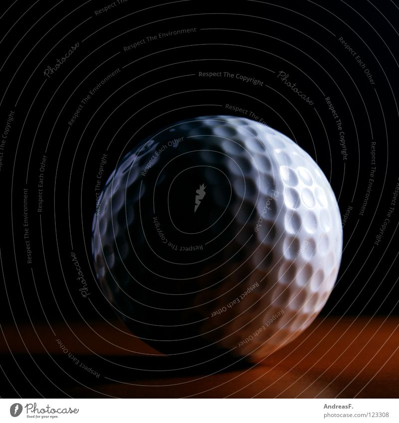 Sports Playing Ball Leisure and hobbies Golf Luxury Statue Moon Hard Handicapped Practice Golf course Burl Ball sports Full  moon Arrest