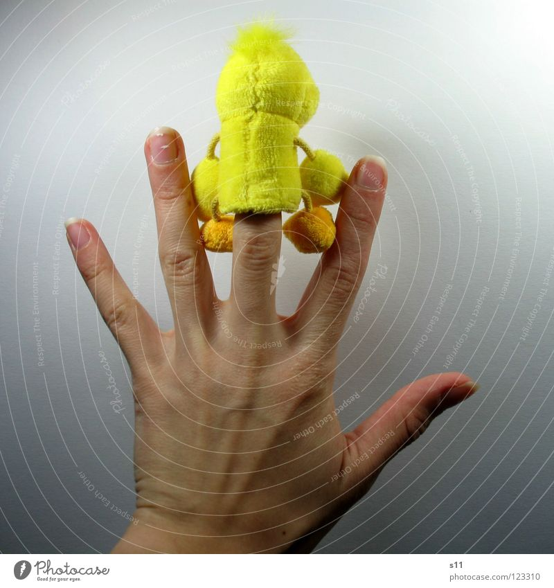 Duck shoot! Fuck you! Joy Hair and hairstyles Playing Children's room Infancy Back Arm Hand Fingers Feet Punk Footwear Toys Cuddly toy Funny Yellow Plush