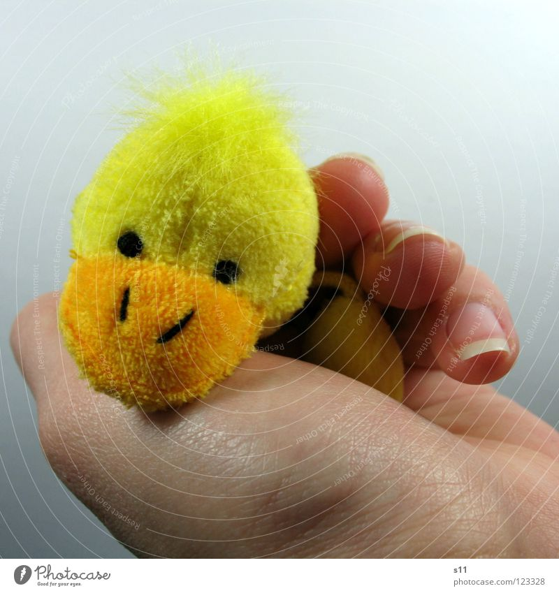 Duck shoot. Tired. Joy Hair and hairstyles Playing Children's room Infancy Hand Fingers Punk Toys Cuddly toy Lie Sleep Funny Yellow Safety (feeling of) Fatigue