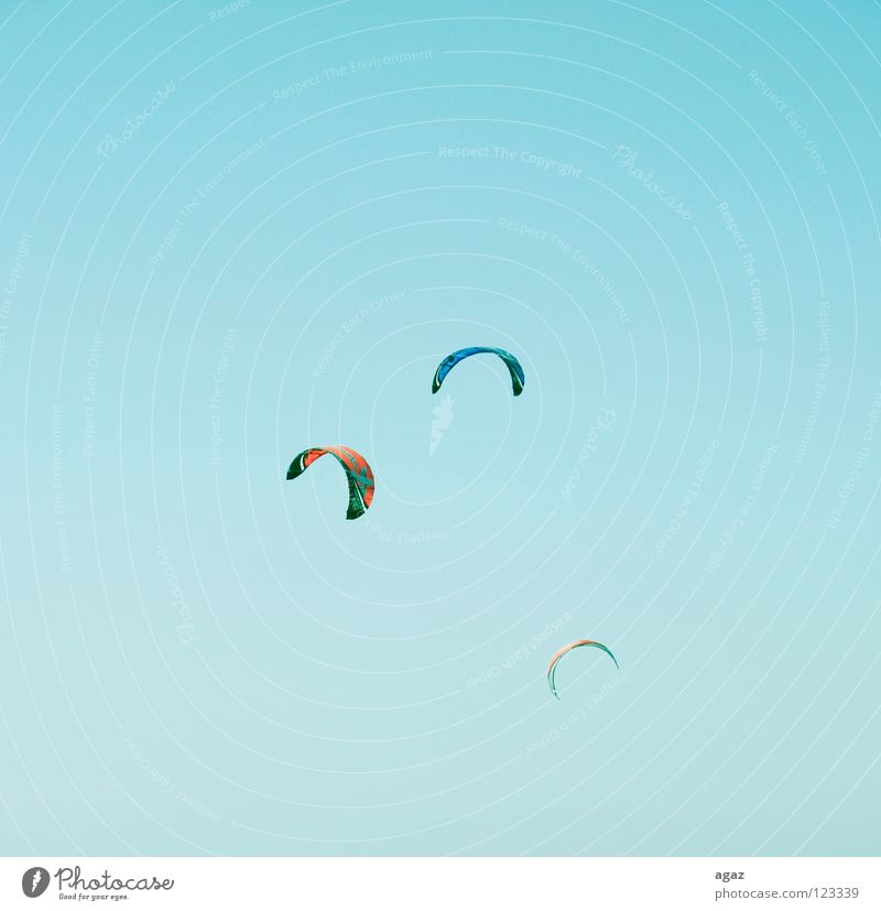 Sky Blue Summer Beach Joy Clouds Playing Warmth Flying Wet To hold on Beautiful weather Physics Hot Athletic Kiting