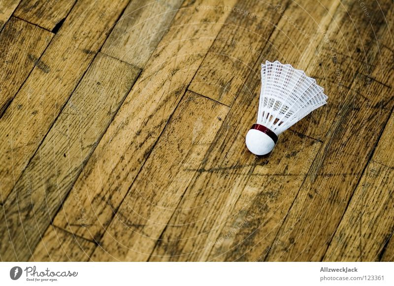 Calm Playing Wood Break Lie Leisure and hobbies Sporting event Warehouse Parquet floor Competition Stagnating Wooden floor Like Gymnasium Ball sports Badminton