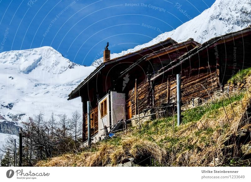 Walser houses Saas Fee Vacation & Travel Tourism Trip Far-off places Summer Summer vacation Mountain Environment Nature Landscape Cloudless sky