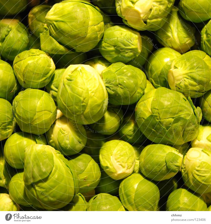 cabbage Brussels sprouts Cabbage Green Delicious Winter Small Ball Flower Blossom Cooking Vegetable Vegetarian diet Odor little crayfish Sphere Markets