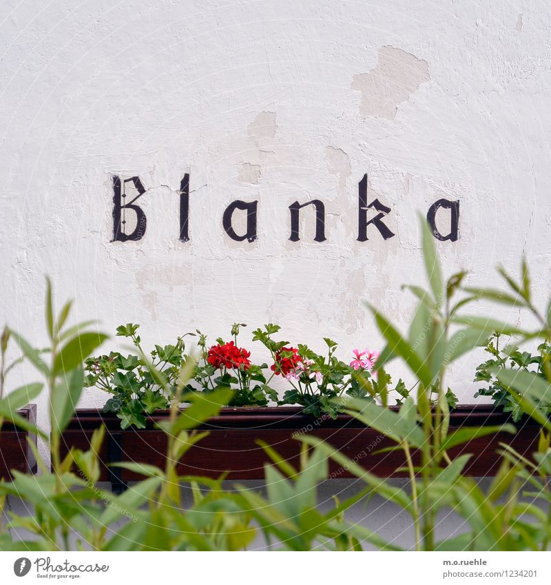 blanca Village Deserted House (Residential Structure) Facade White Authentic Colour photo Subdued colour Exterior shot Copy Space left Copy Space right