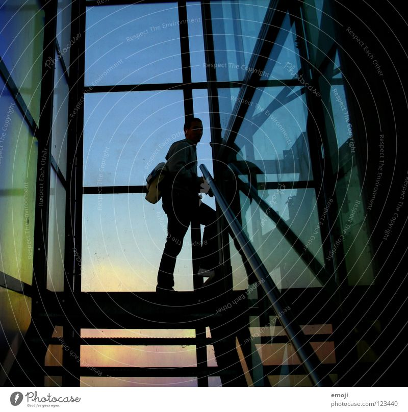 Human being Man Blue Colour Cold Building Line Art Glass Happiness Stairs Modern Cool (slang) Culture Good