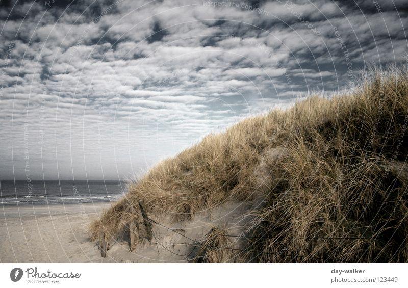 Coast to Coast Beach Ocean Lake Grass Clouds Mud flats Access Cloud cover Dark Light Waves Surf Earth Sand Beach dune vein Sky Nature Lanes & trails Island