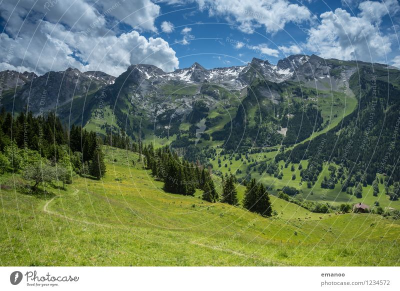 alpine valley Relaxation Calm Vacation & Travel Tourism Trip Summer Mountain Hiking Nature Landscape Plant Air Sky Clouds Weather Beautiful weather Tree Grass