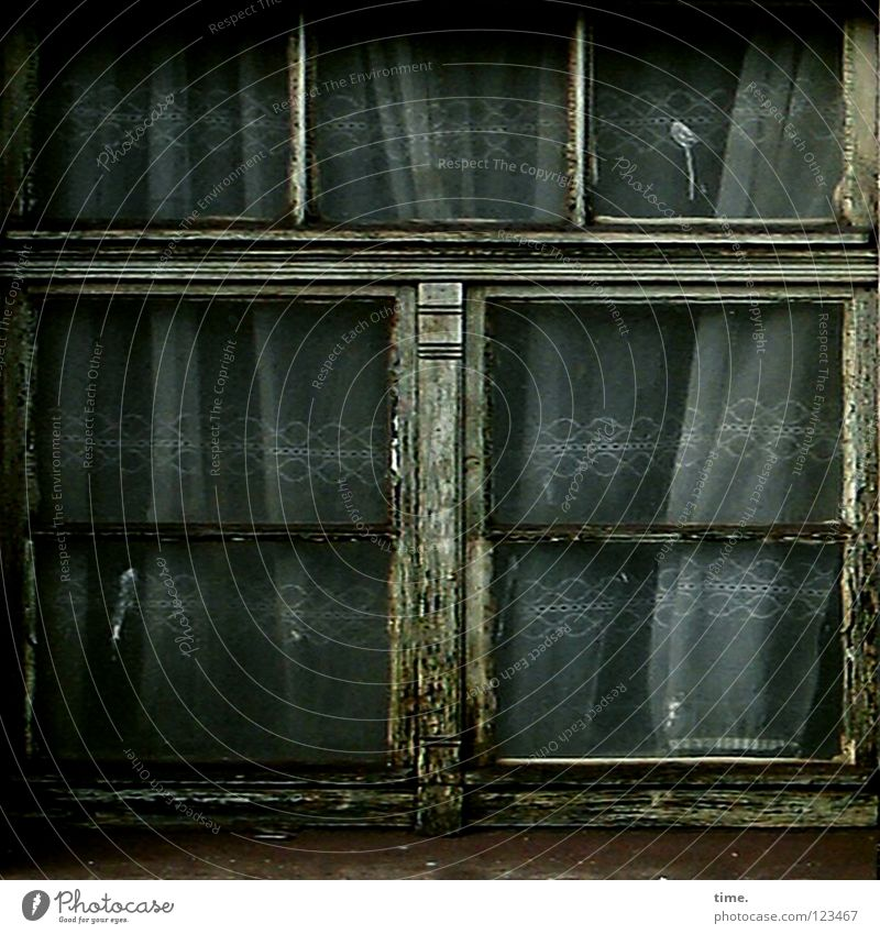 Old Colour Loneliness Window Glass Empty Transience Decline Uninhabited Living room Curtain Window pane Train station Spider's web Pane Vacancy