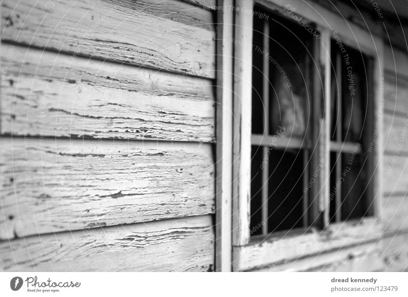 woodshed Black & white photo Exterior shot Detail Structures and shapes Copy Space left Day Central perspective Looking House (Residential Structure) Deserted
