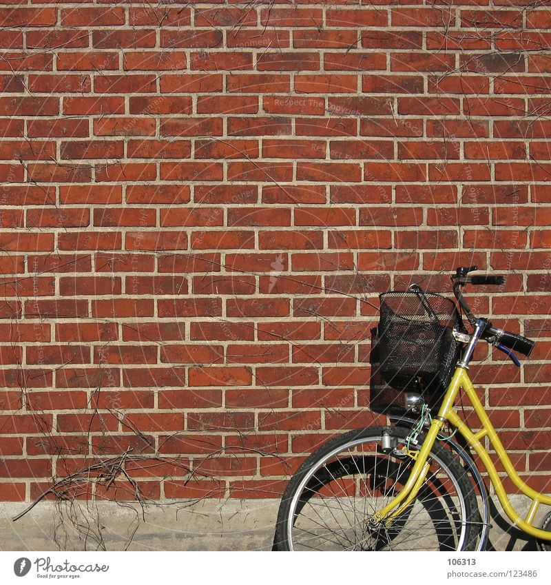 MR. POSTMAN? Bicycle Mail Wall (barrier) Wall (building) Metal Brick Yellow Red Ladies' bicycle Basket Old-school Empty Things Lean bicycle basket