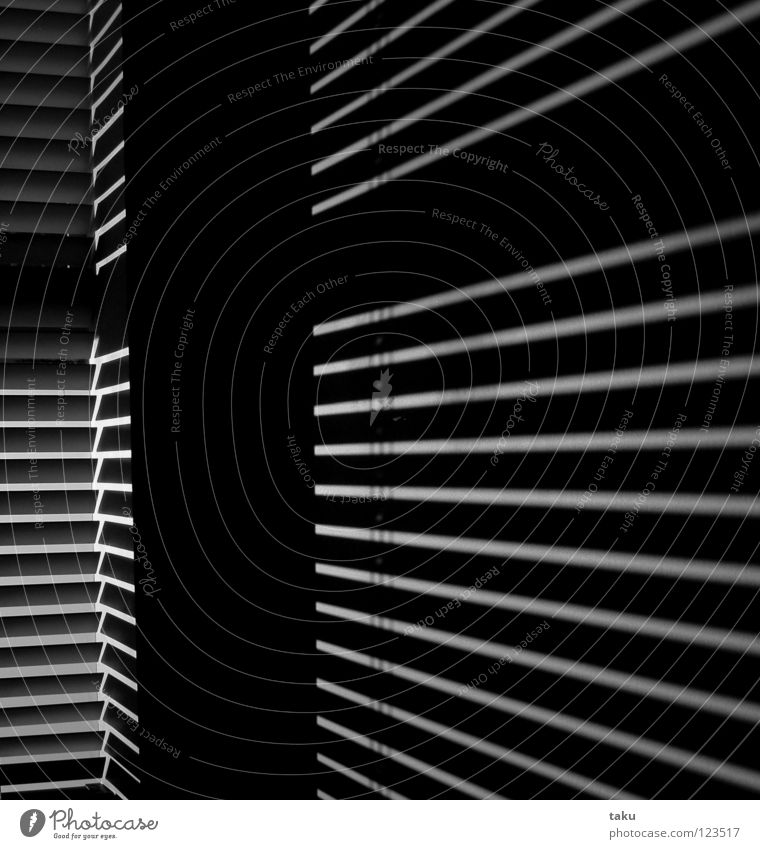 STRIPES II Light Room Wall (building) Stripe Black & white photo Sun Line Shadow Reflection living space funky Modern ...