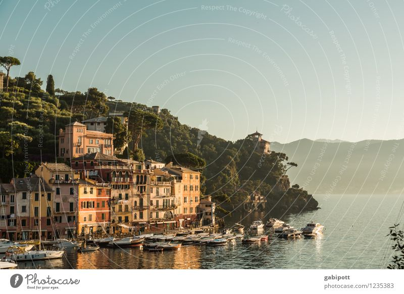 Portofino Vacation & Travel Landscape Water Cloudless sky Sunrise Sunset Sunlight Summer Hill Coast Bay Ocean Idyll Joie de vivre (Vitality) Ease Luxury Tourism