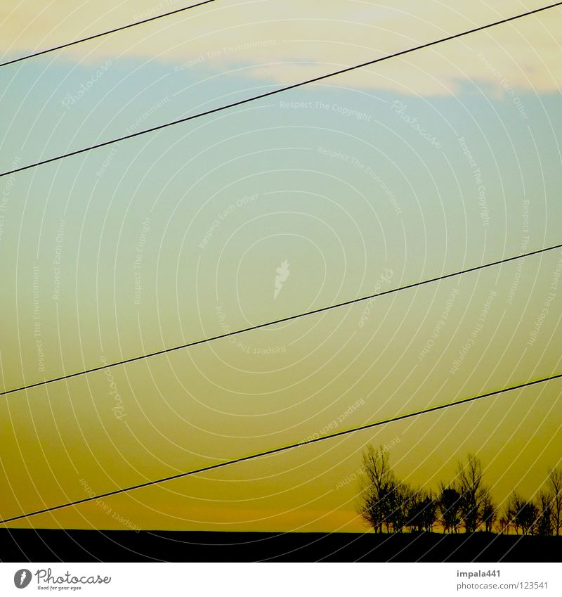 straightforward Sunset Yellow Tree Clump of trees Black Clouds Electricity Progress 4 Modern Boredom Mountain Blue Line Sky Earth Landscape Cable