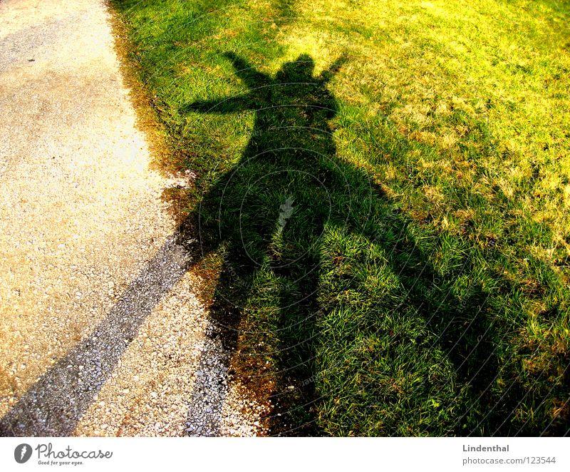 Joy Meadow Playing Funny Dance Gravel Absurdity Shadow play