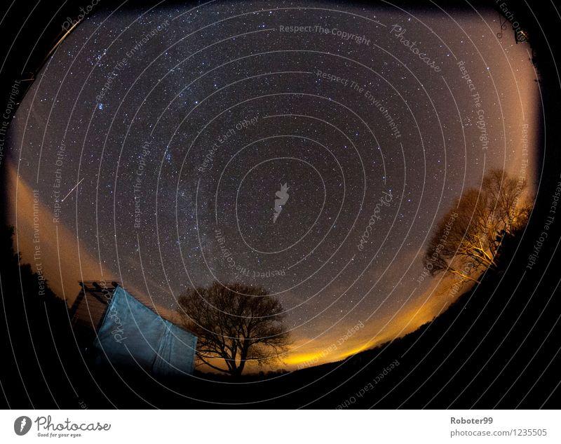 Sky Calm Forest Horizon Field Stars Curiosity Hut