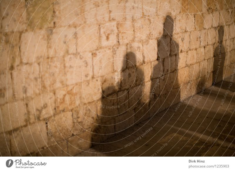 shadow society Human being 4 Group Castle Manmade structures Building Wall (barrier) Wall (building) Observe Stand Wait Together Brown Gold Moody Dangerous