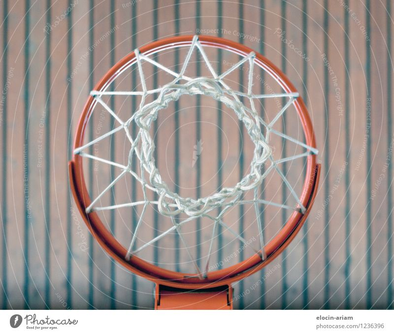 through the middle Wood Throw Thin Basketball basket Sports Gymnasium Colour photo Interior shot Artificial light Worm's-eye view Downward