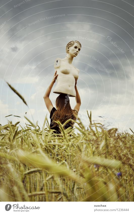 she looked ... and looked ... Sky Clouds Field Wheat Ear of corn Summer Face Head Torso Mannequin Child Girl Infancy Freedom Strange Idea