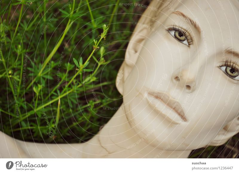 there she lay in the grass. Grass Green Doll Mannequin Face Eyes Nose Mouth Model False