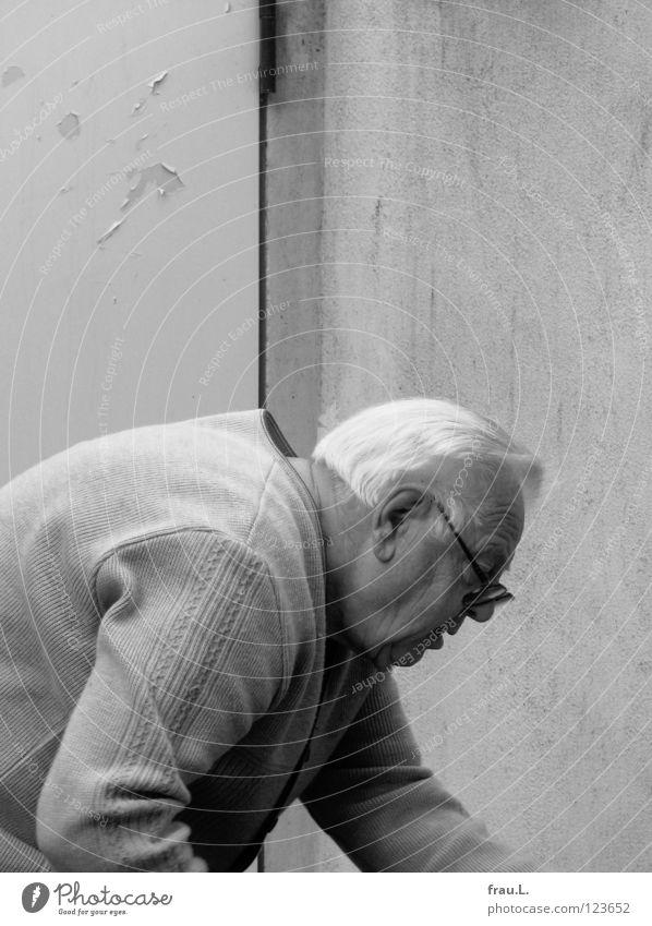 Man Old Senior citizen Garden Door Work and employment Back Arrangement Masculine Action Corner Eyeglasses Wrinkle Wrinkles Concentrate Grandfather