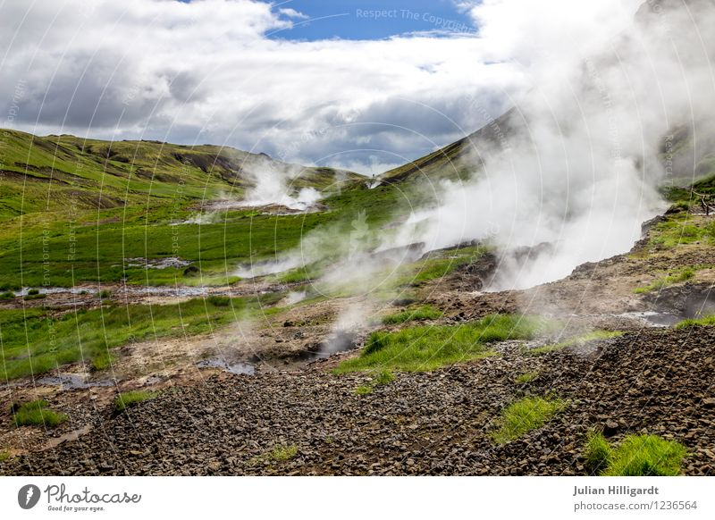 steaming floor Lifestyle Vacation & Travel Trip Adventure Far-off places Freedom Environment Nature Landscape Grass Moody Contentment Shroud of fog Smoke